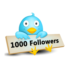 How I Gained My First 1000 Twitter Followers